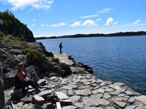 Skogtun Camping 2016 8