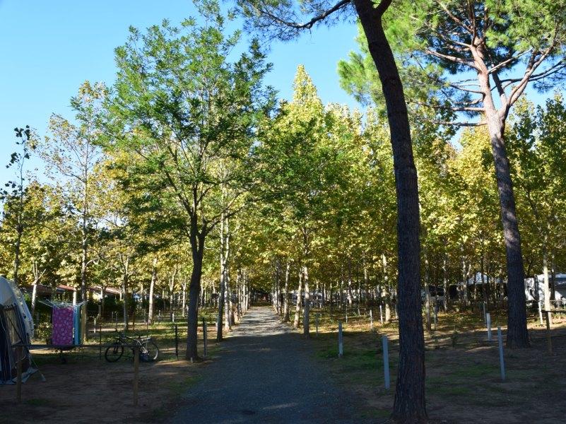 camping-village-baia-azzurra-club-2016-2