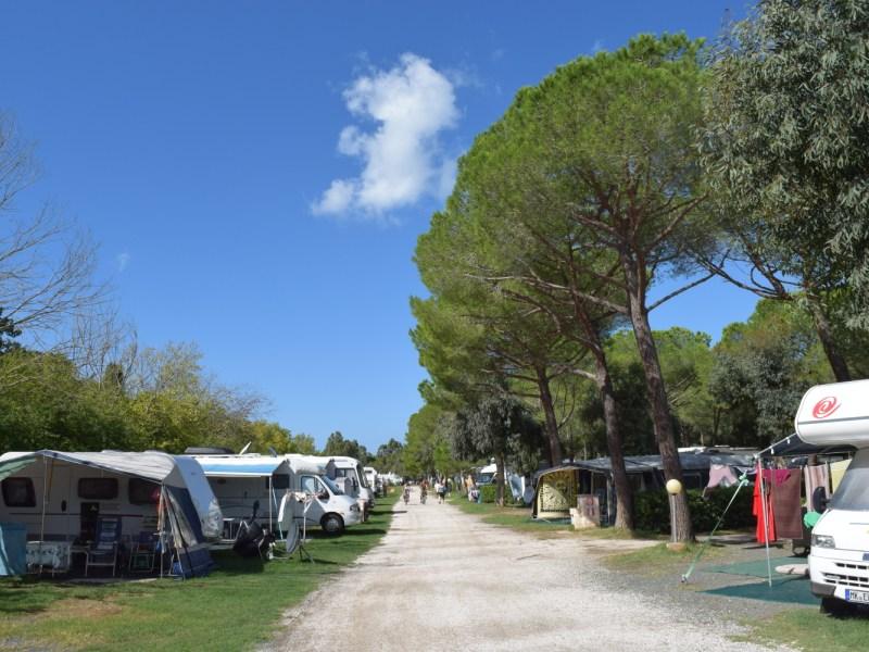 mareblu-camping-village-2016-2